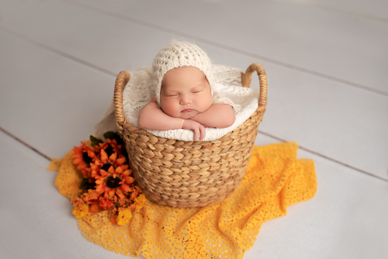 newborn photography sunflowers