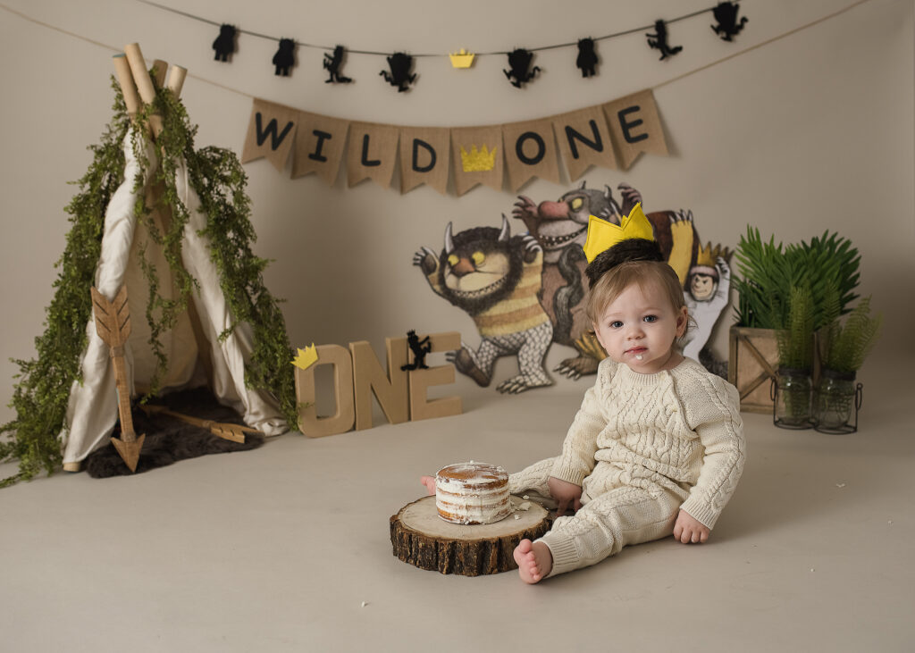 where the wild things are cake smash photo session